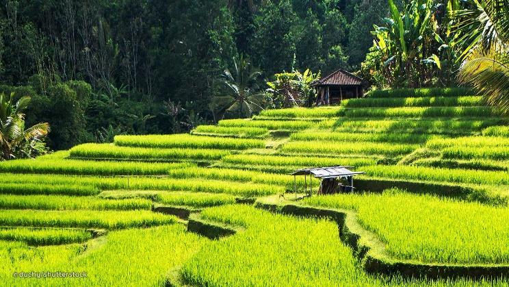 Week-end à Bali, quelle destination méritée à visiter pour les vacances courtes?