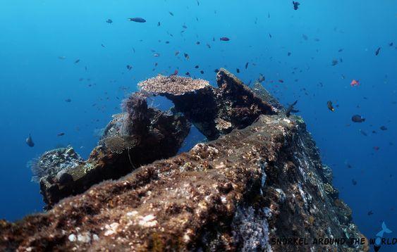 Bali Plongée Epave, une expérience hors du commun