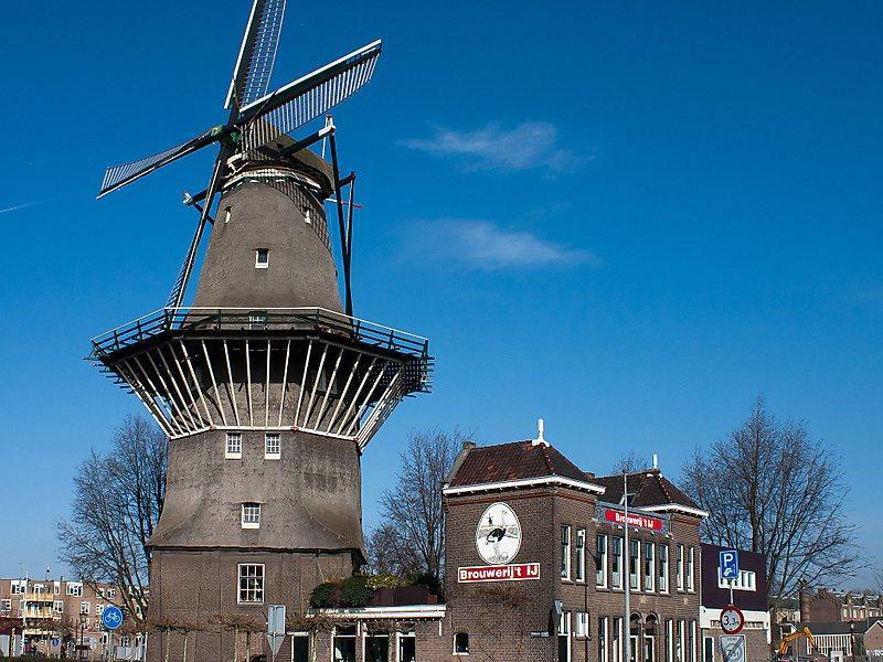 Les Pays-Bas, un pays faisant coloniser l'Indonésie dispose plein de destinations touristiques !