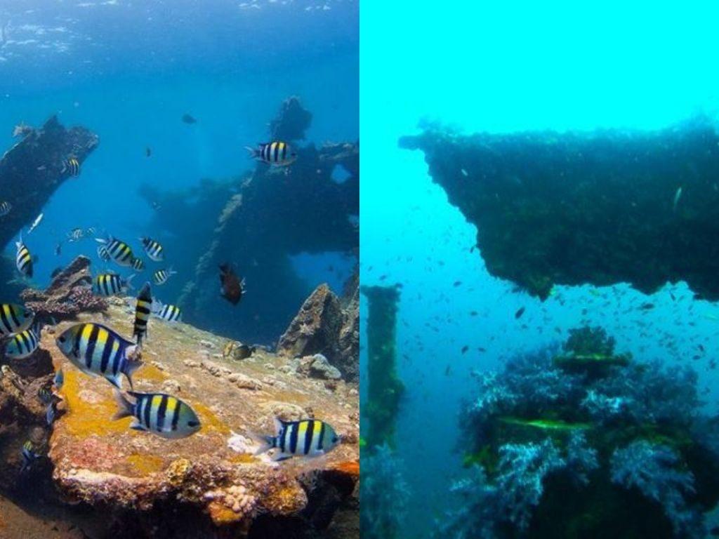 Spot Plongée Bali : vaut-il mieux plonger à Bali ou à Phuket ?