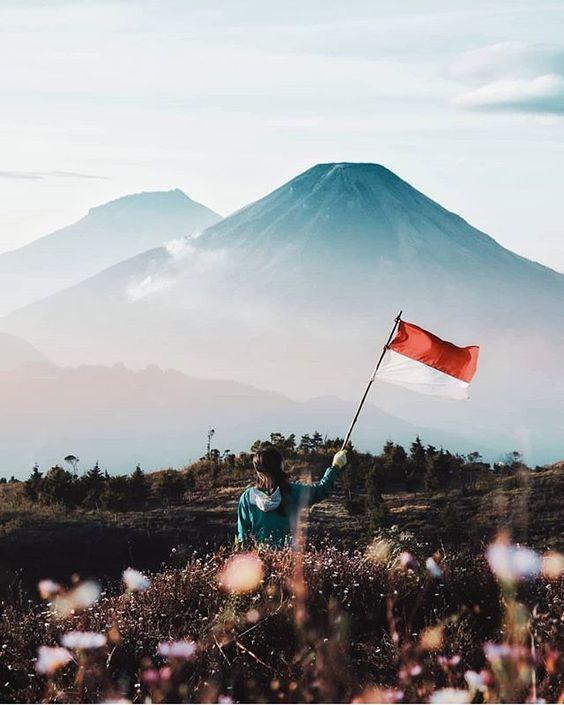 Les choses générales que vous pouvez trouver pendant votre voyage en Indonésie