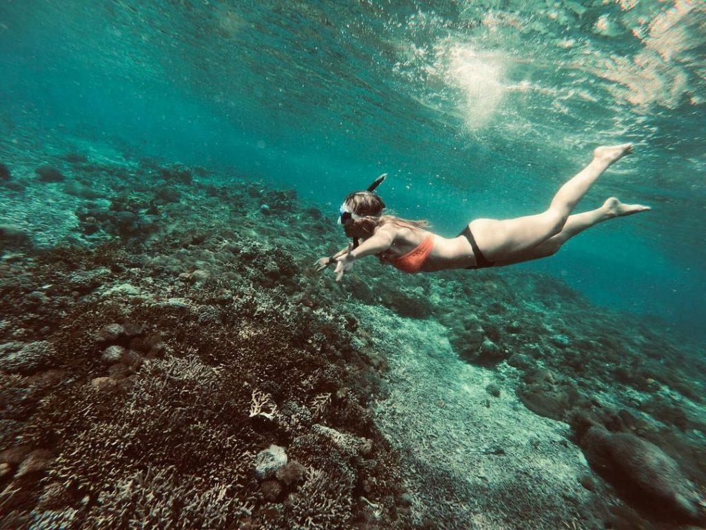 Meilleurs sites de plongée à Bali pour voir des animaux marins en voie de disparition