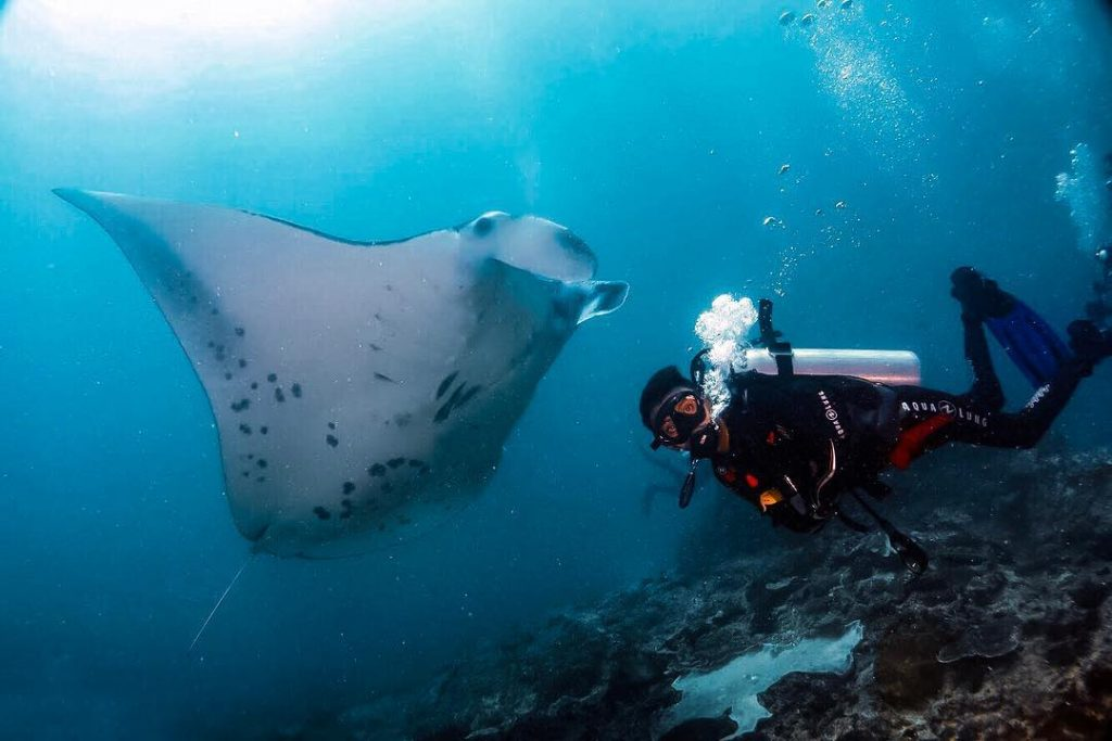 Aire marine protégée de Nusa Penida