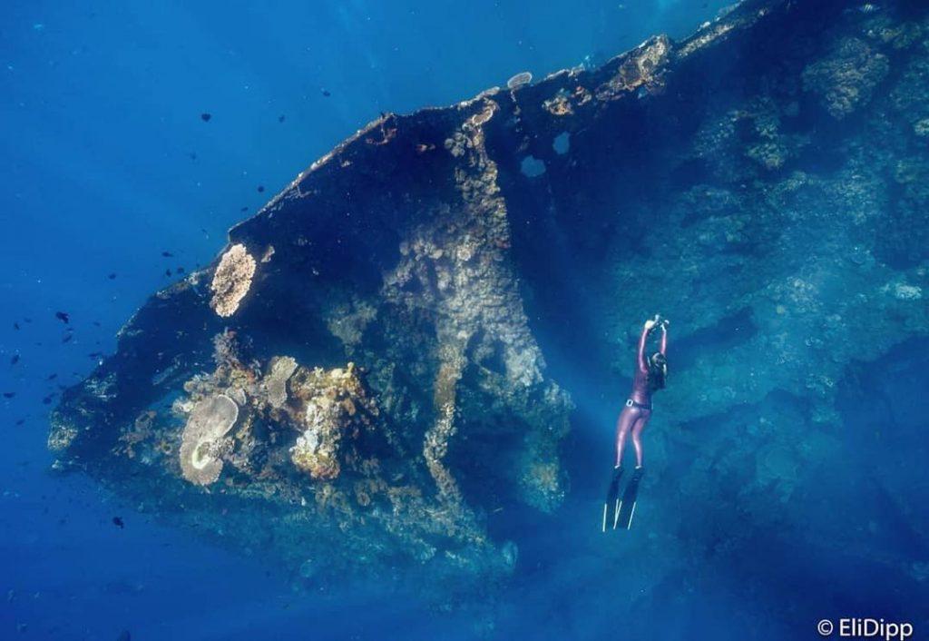 Ce qu'il faut considérer avant de faire de la plongée sur épave à Bali